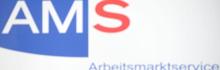 AMS: der Partner des Mittelstands für die Suche vonFachkräften?